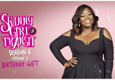 "Skinny Girl in Transit – S6E3 ""BirthdayGift"""